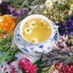 Gyógynövénykalauz nőknek  – a várandósságtól a változó korig